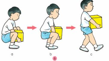 Bài 4: Làm gì để xương và cơ phát triển tốt?