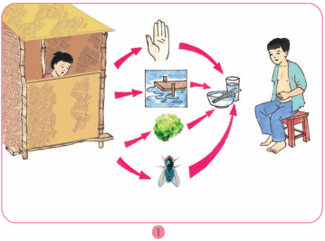 Bài 9: Đề phòng bệnh giun