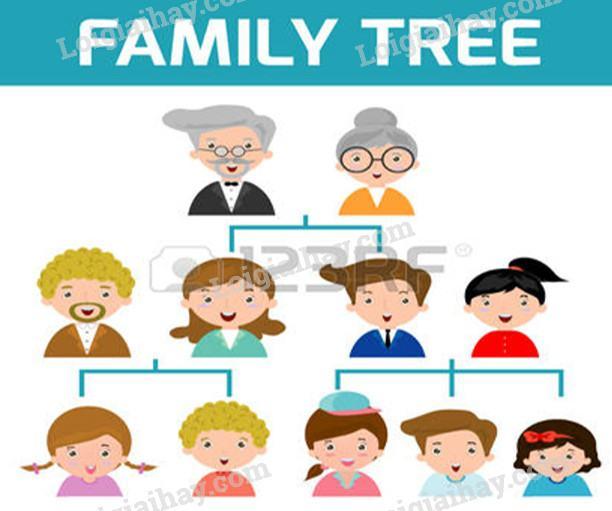 Bài 21-22: Thực hành : Phân tích và vẽ sơ đồ mối quan hệ họ hàng