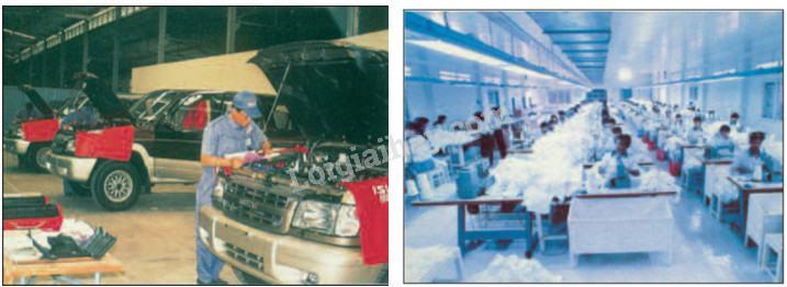 Bài 31: Hoạt động công nghiệp, thương mại