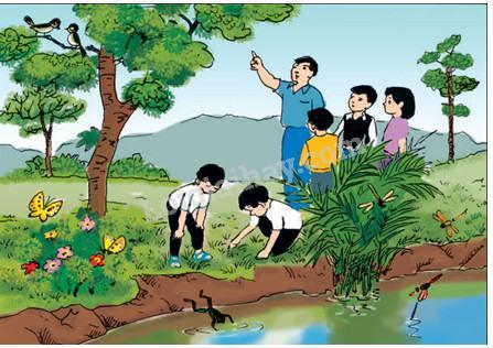 Bài 56-57: Thực hành: Đi thăm thiên nhiên