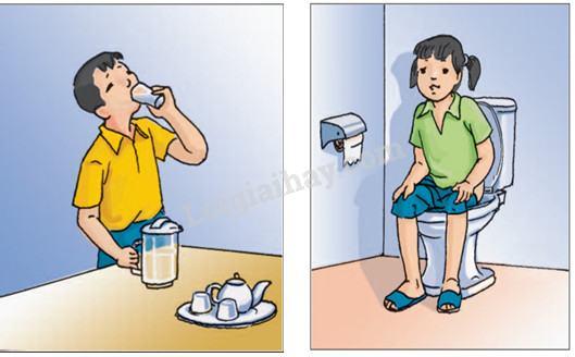 Bài 11: Vệ sinh cơ quan bài tiết nước tiểu